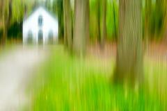 Sumário da floresta foto de stock royalty free