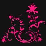Sumário da grama e das flores Fotografia de Stock Royalty Free