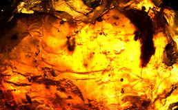 Sumário da luz solar passado durante todo a resina Fotografia de Stock
