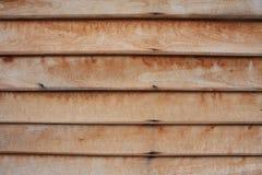 Sumário da madeira Foto de Stock Royalty Free