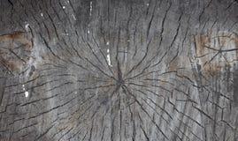 Sumário da textura velha da madeira do log, coto de madeira do log como o fundo ou papel de parede, teste padrão de madeira do co fotos de stock