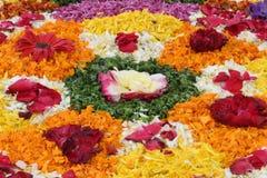 Sumário das flores Imagens de Stock