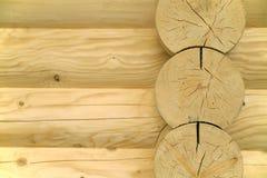 Sumário de madeira Fotografia de Stock