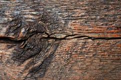 Sumário de madeira da textura Imagens de Stock