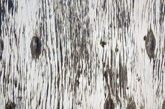 Sumário de madeira podre velho Imagem de Stock