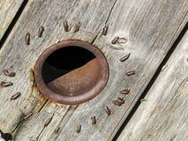 Sumário de madeira rústico do sunburst Imagens de Stock