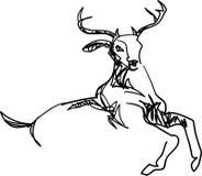Sumário de salto do veado ilustração royalty free