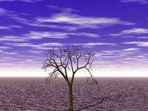Sumário/desertificação ilustração royalty free