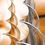 Sumário do ADN ilustração do vetor