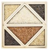 Sumário do arroz na bandeja do tangram Fotografia de Stock Royalty Free