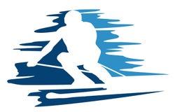 Sumário do esqui Foto de Stock Royalty Free