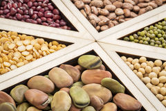 Sumário do feijão, da lentilha e da ervilha Fotos de Stock Royalty Free