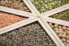 Sumário do feijão, da lentilha e da ervilha Imagem de Stock Royalty Free