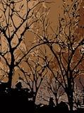 Sumário do fundo das árvores fotografia de stock