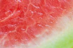 Sumário do melão de água Foto de Stock
