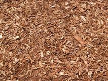 Sumário do mulch Fotos de Stock Royalty Free
