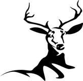 Sumário dos cervos ilustração stock