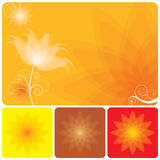 Sumário floral Fotos de Stock