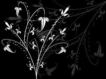 Sumário floral ilustração do vetor