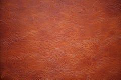 Sumário, fundo, textura Fotografia de Stock