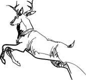 Sumário running do veado ilustração do vetor