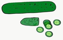 Sumário verde verde Art Illustration Vetora Photo dos ingredientes de alimento do pepino ilustração royalty free