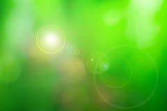 Sumário verde natural do borrão de movimento Fotos de Stock