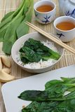 Sum Choy on Steamed Rice stock photography