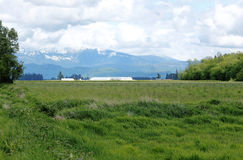 Sumas Farm Land. A rural landscape in northwestern Washington State near the Sumas Mountain Range royalty free stock photo