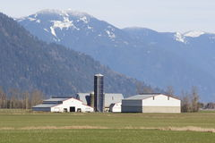Sumas Mountain Farm Royalty Free Stock Photos