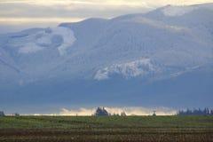Sumas vinterlandskap Arkivfoto