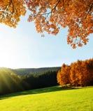 Ландшафт осени в национальном парке Sumava стоковое изображение