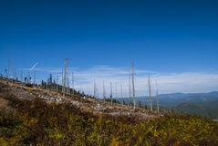 Sumava Mountains Royalty Free Stock Photo