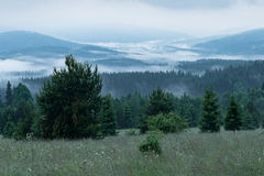 Sumava National Park Stock Photo