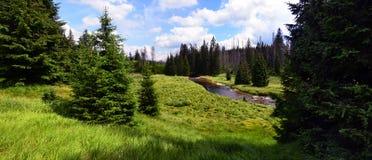 Sumava nationalpark, Tjeckien Fotografering för Bildbyråer