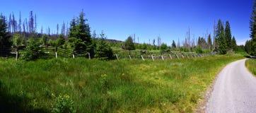 Sumava, park narodowy, republika czech Obraz Stock