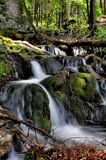 Sumava stream Stock Image