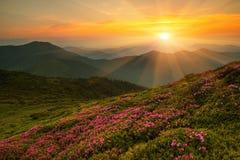 Sumer Carpathian landscape Royalty Free Stock Photography