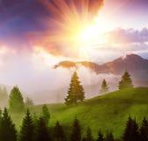 Sumer Carpathian landscape Stock Images