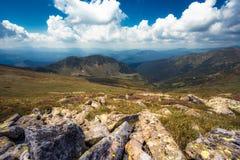 Sumer Carpathian landscape Stock Image