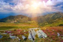 Sumer Carpathian landscape Royalty Free Stock Image