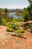 Sumer in het Provinciale Park Ontario Canada van Killarney Royalty-vrije Stock Foto's