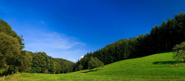 Sumer landscape Royalty Free Stock Images