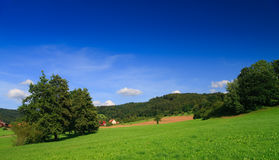 Sumer landscape Stock Photo