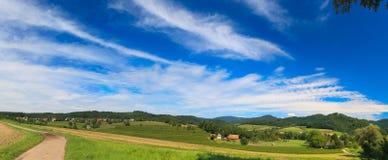Sumer landscape Stock Images