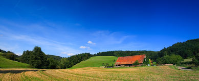 Sumer landscape at Germany Royalty Free Stock Photography