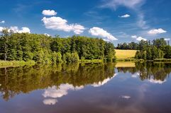 Sumer pond Royalty Free Stock Photos
