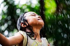 Sumer rain Stock Images