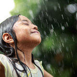 Sumer rain Royalty Free Stock Photo