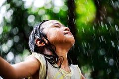 Sumer regn Arkivbilder